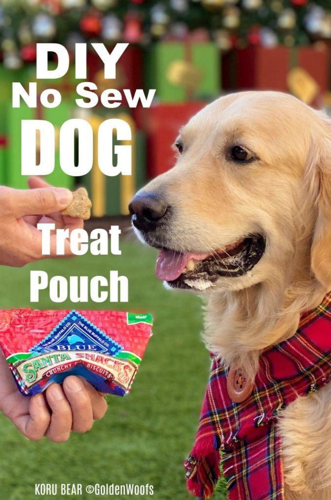 DIY No Sew Dog Treat Pouch