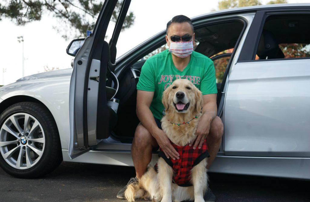 Dog Travel Car Rides Winter Tips