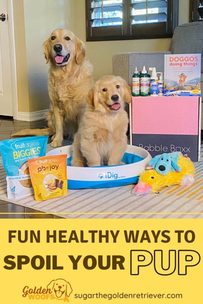 fun healthy ways to spoil your pup