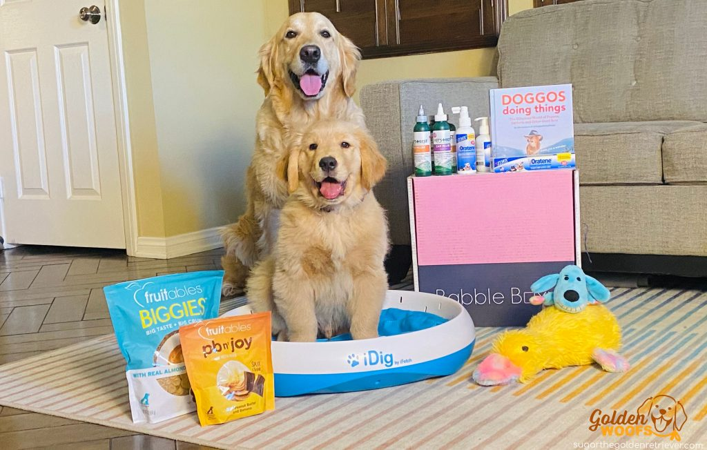 healthy ways to spoil your pup