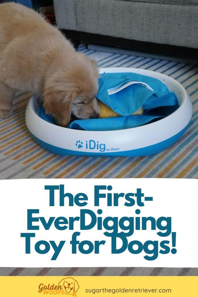 idig digging dog toy by ifetch