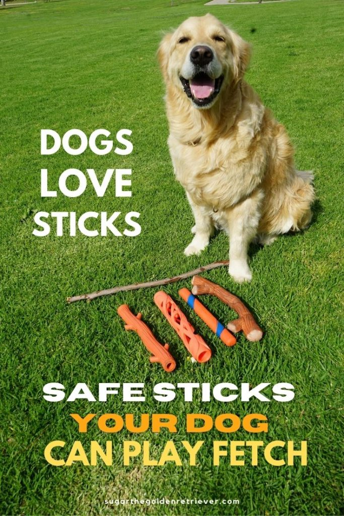 dog safe stick dog toys