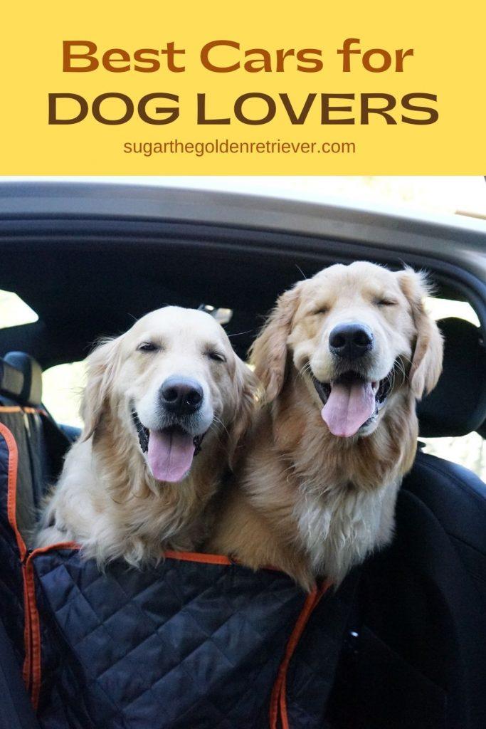 Autotrader best Cars for Dog Lovers