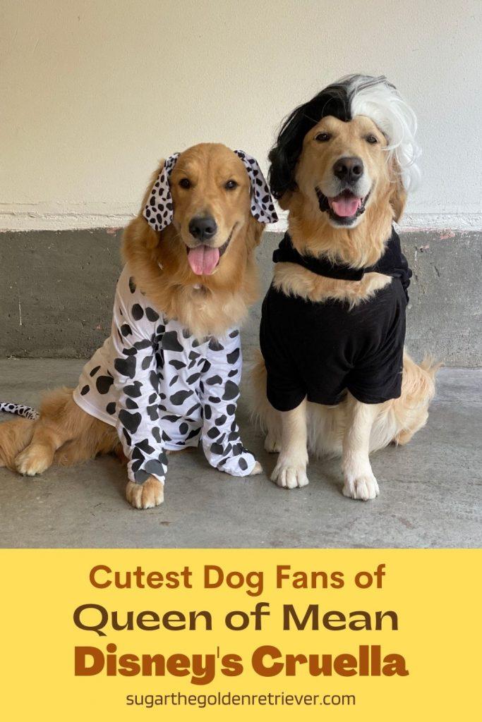 Cutest Dog Fans of Queen of Mean Disney's Cruella