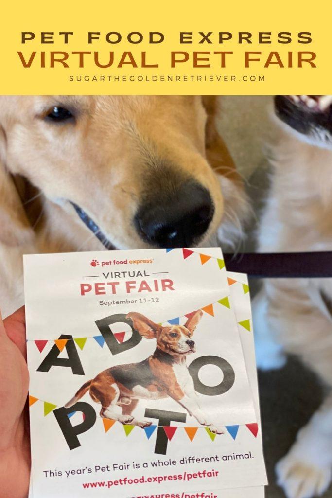 Pet Food Express Virtual Pet Fair